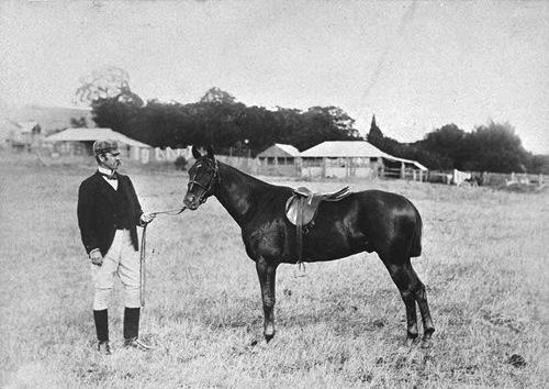 Edwin Dun and an imported horse at Makomanai Farm