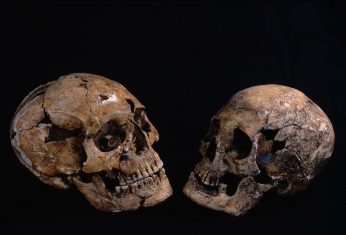 Kitakogane Shell Midden: Jomon people from the Kitakogane Shell Midden