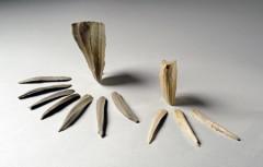ピリカ遺跡蘭越型細石刃核接合資料