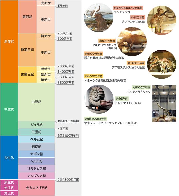 自然史年表
