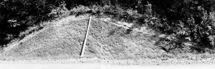 キウス周堤墓:2号周堤墓周堤断面