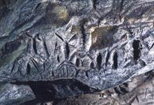 フゴッペ洞窟出土の刻画