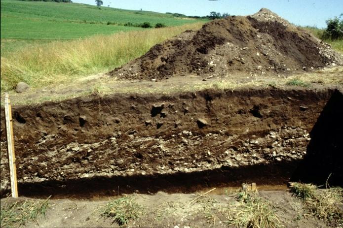 北黄金貝塚:発掘中の貝塚