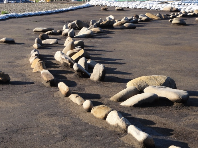 鷲ノ木遺跡:環状列石配石状況