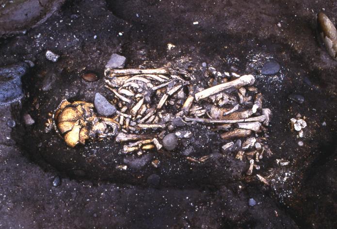 入江・高砂貝塚:土坑墓