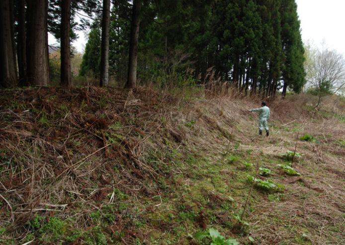 垣ノ島遺跡:盛土遺構の現況