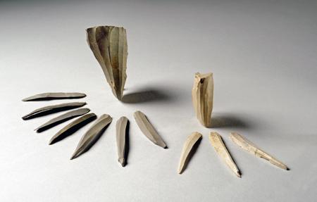 ピリカ遺跡:蘭越型細石刃核接合資料