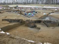縄文文化でサケ漁が行われていた川底から、大量の杭(くい)列が発掘されました